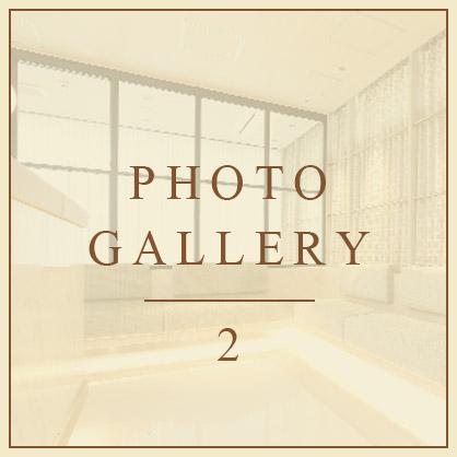 PHOTO GALLERY 2